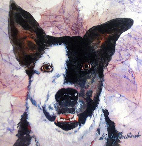 Gracie - Pet Portrait by Shirley Nachtrieb