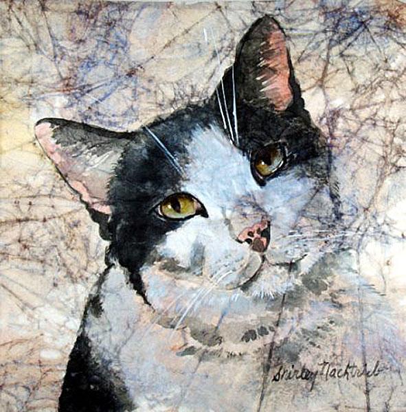 Muffin - Pet Portrait by Shirley Nachtrieb