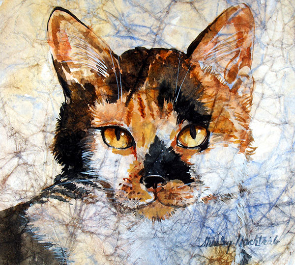 Pandora - Pet Portrait by Shirley Nachtrieb