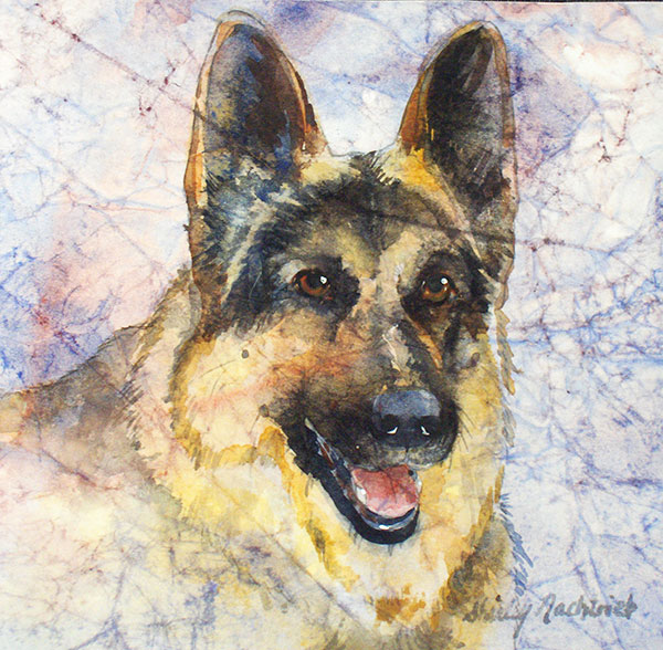 Sadie - Pet Portrait by Shirley Nachtrieb