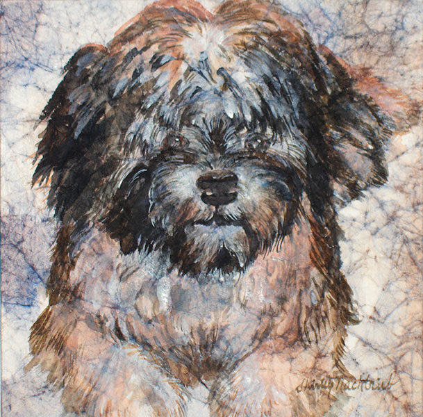 Wheaten Terrier - Pet Portrait by Shirley Nachtrieb